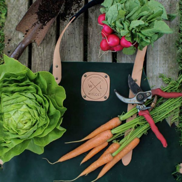 Green apron on a table with radish, carrots and